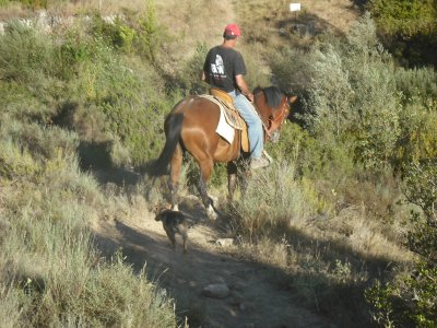 Horse Riding Trip + Via Ferrata in Sierra de Guara