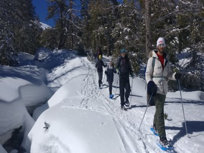 Night snowshoes tour in La Cerdanya