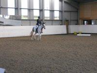 Dressage at Willowbrook Riding Centre