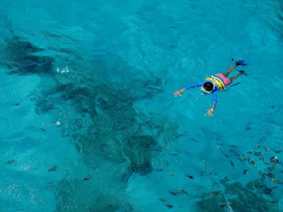 Snorkeling in the Cantabrian Sea 2 hours