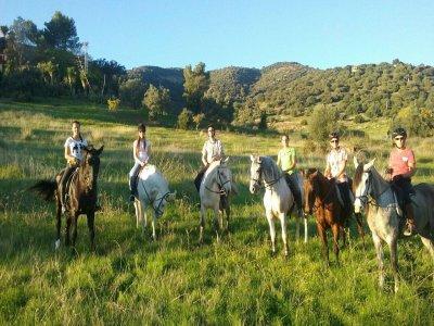 1:30 h horse ride tour San Vicente de la Barquera