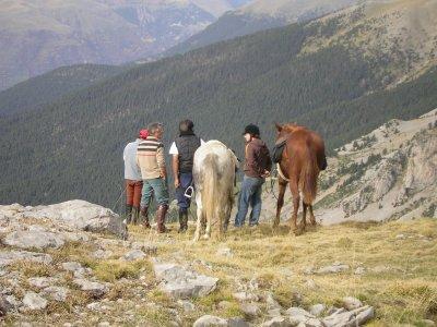 Horse riding tour in Barbastro (Huesca), 1h