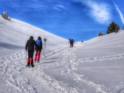 Snowshoes tour 6h in Solsonés