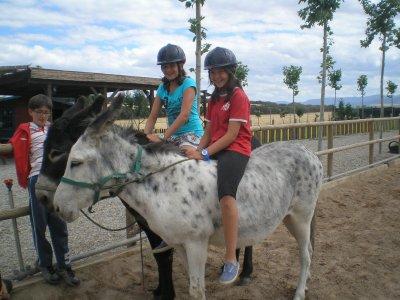 Equestrian birthday children snack Haro 3h