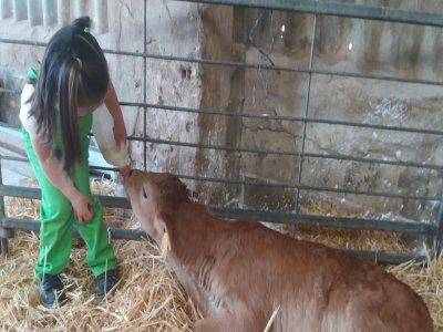 Farm school visit San Torcuato families