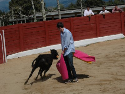 Pool heifer-fighting lunch karaoke Ciempozuelos 3h