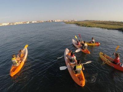 Paddle Surf or Kayak Descent Guadiana Isla Canela
