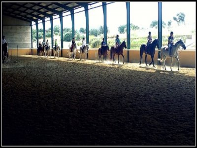 Horse riding for beginners groups Cáceres 30 m