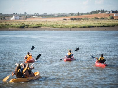 Family pack Bungalow Night & Kayak Isla Cristina