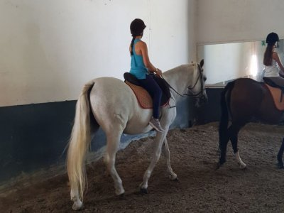 Riding lessons children 4 to 6 years, 15 min Mijas