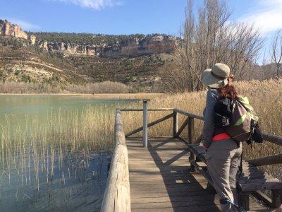 Ornithological trip mornings around Madrid