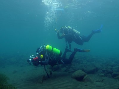 Guided scuba diving immersion 3h in Marbella