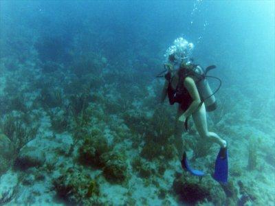 Daily full scuba-diving equipment rental Marbella
