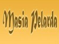 Masía Pelarda Capeas