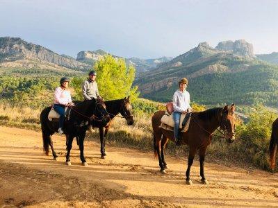 Horse riding Assut de Lledó 10 km 2 hours