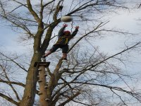 High rope courses are also available.