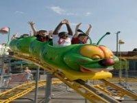 Caterpillar Coaster