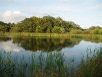 Our fishing lake