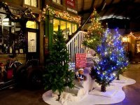 Christmas at Bressingham