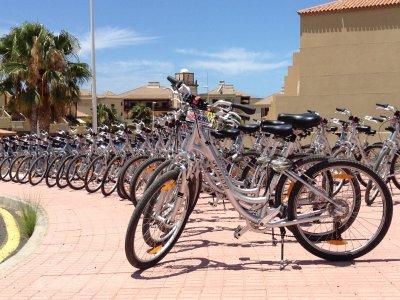 Bike rental in Tenerife one month