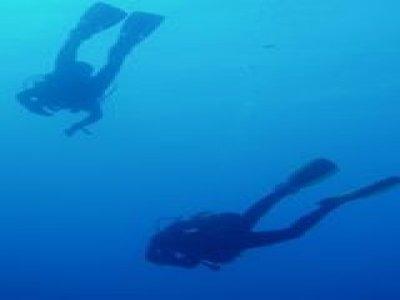 Dive Mobile