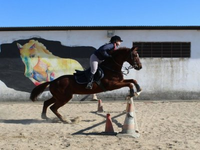 4 riding lessons in San Juan de Aznalfarache