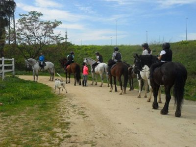 Birthday and horse riding in Seville