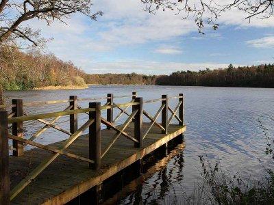 Fritton Lake Fishing