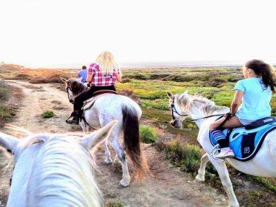 Horseback riding in Chiclana de la Frontera 4h
