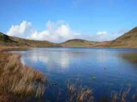 The moors of Llyn Bugeilyn are another popular fishing spot
