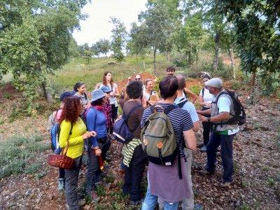 Mycological route in Sierra de Aracena 11 hours
