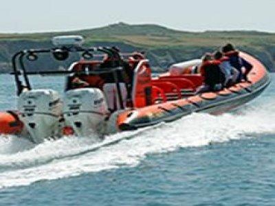 Padstow Sealife Safari Fishing Boats