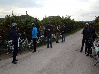 Mountain bike rental in Benidorm half day