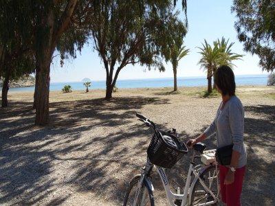 Half-day electric bike rental in Benidorm