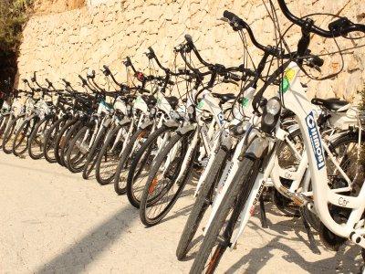 1 day electric bike rental in Benidorm