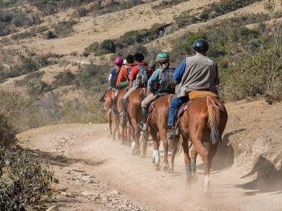 Horseback ride between Pajunas cows El Torcal