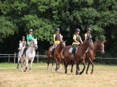Group riding lesson Ortigueira 60 min