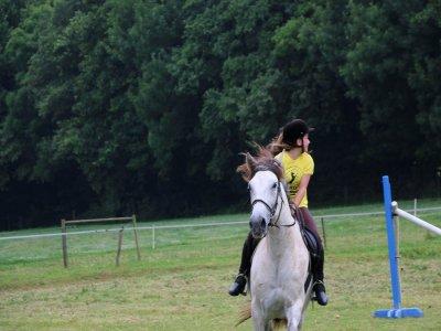 Individual riding lessons Ortigueira 1hour