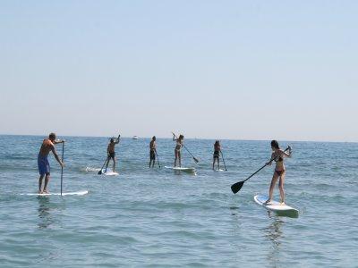 Paddle surf rental in Benidorm 4 hours