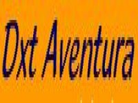DXT Aventura Team Building