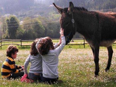 Ortigueira equestrian center family visit 1 day