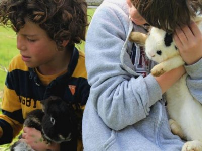 Children's birthday farm in Ortigueira