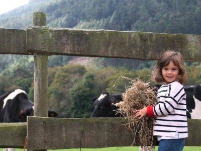 Birthday farm Ortigueira route surroundings 1day