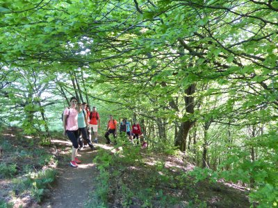 Hiking tour team building in Vall d'en Bas