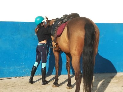 Day horse riding camp in Cullera