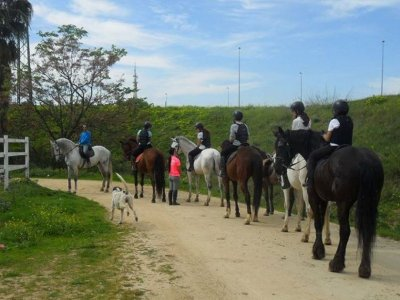4 riding lessons San Juan de Aznalfarache children