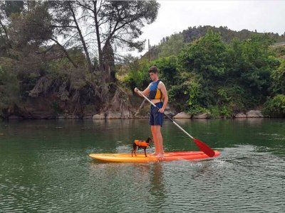 Paddle surf route in Benifallet 1 hour