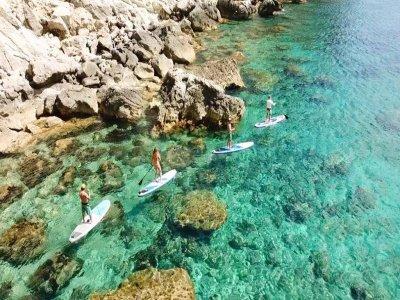 Paddle surf equipment rental Puerto de Alcudia 1h