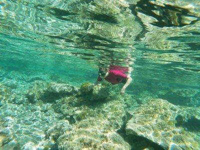 Snorkeling trip through Bonaire 1,5 hours