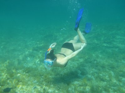 Snorkelling excursion around islet Benidorm